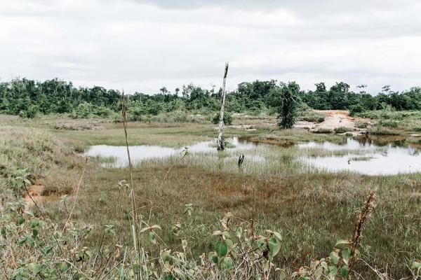 gold reserve in Venezuela