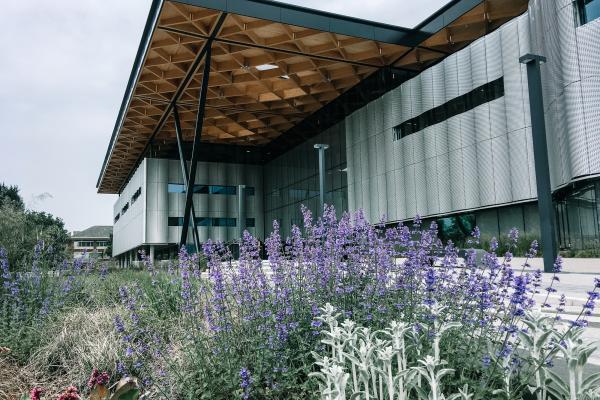 University of Warwich
