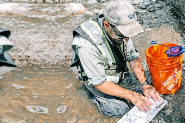 A fishery assessment in Ashcroft, British Columbia where Aquatic Ecologist David Rainho from the Kamloops office is measuring a Rainbow Trout captured in an electrofishing survey.