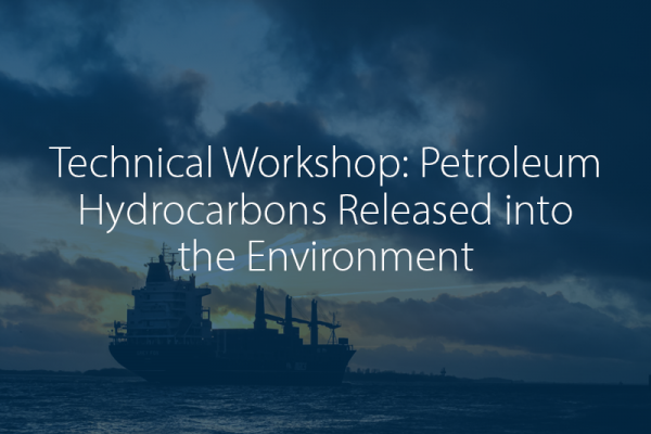 Technical Workshop: Petroleum Hydrocarbons Released into the Environment