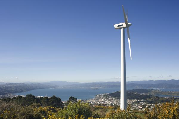 Wind Farm, Auckland