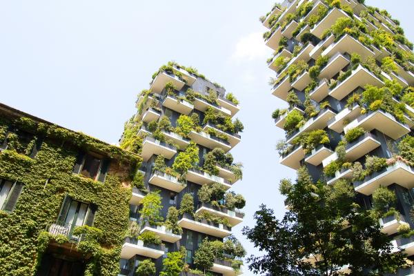 high rise buildings with lots of green plants on the outside